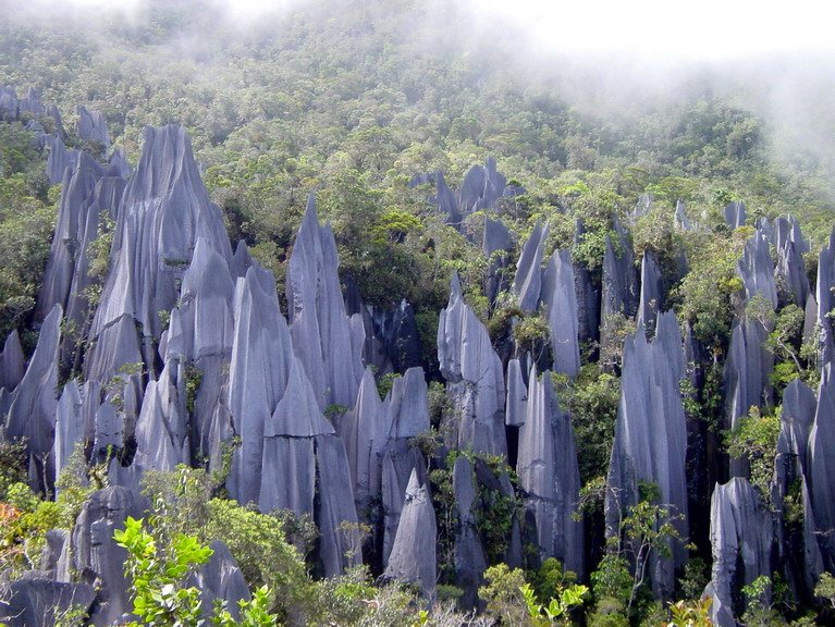Gunung Mulu Nationalpark