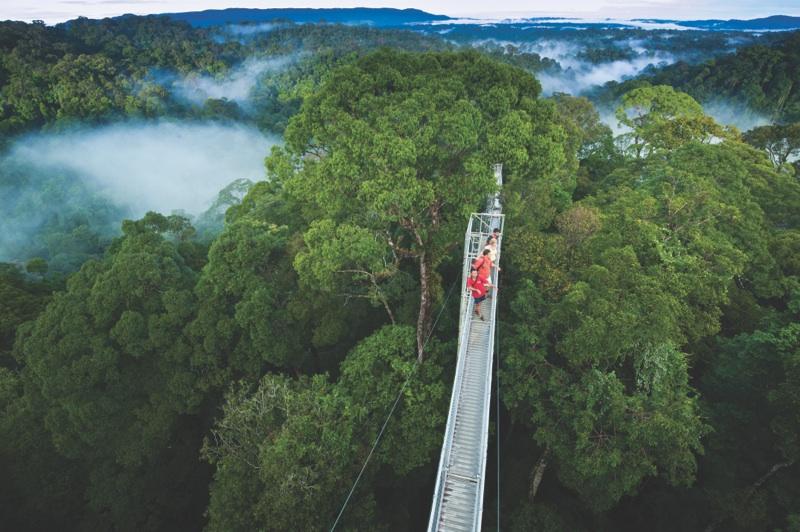 Brunei National Park