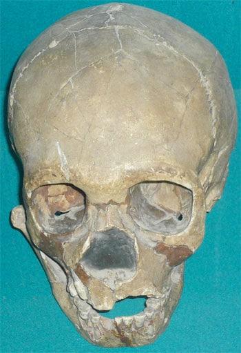 Neanderthaler Schädel aus Usbekistan