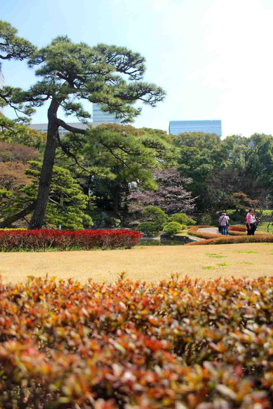 Tokio Kaiserpalast Ostgarten